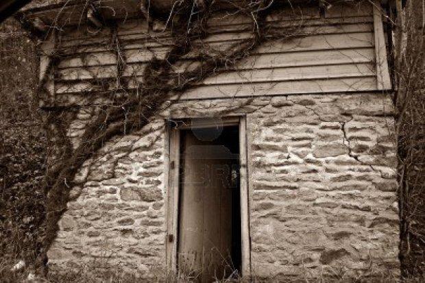 old-building-with-vine-and-open-door
