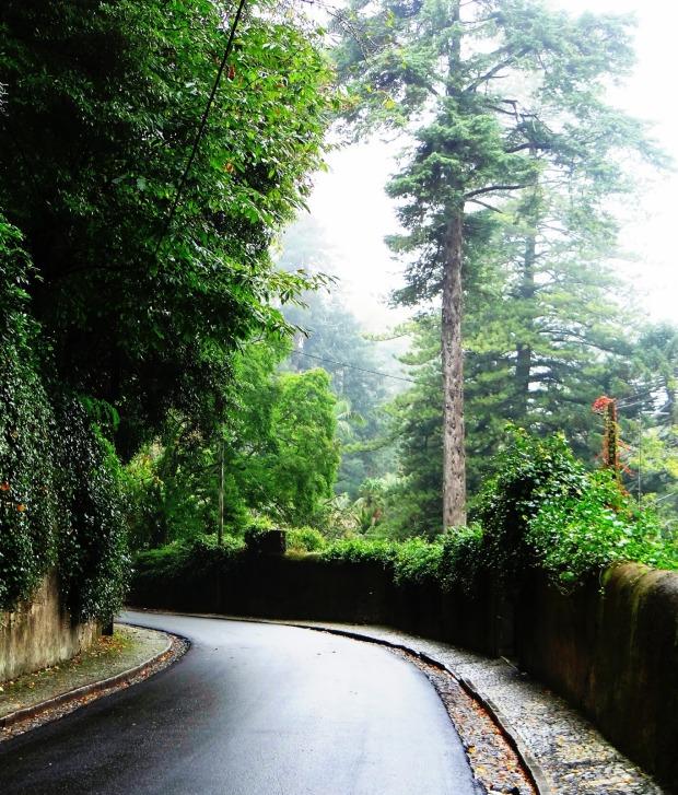 estrada Sumaré