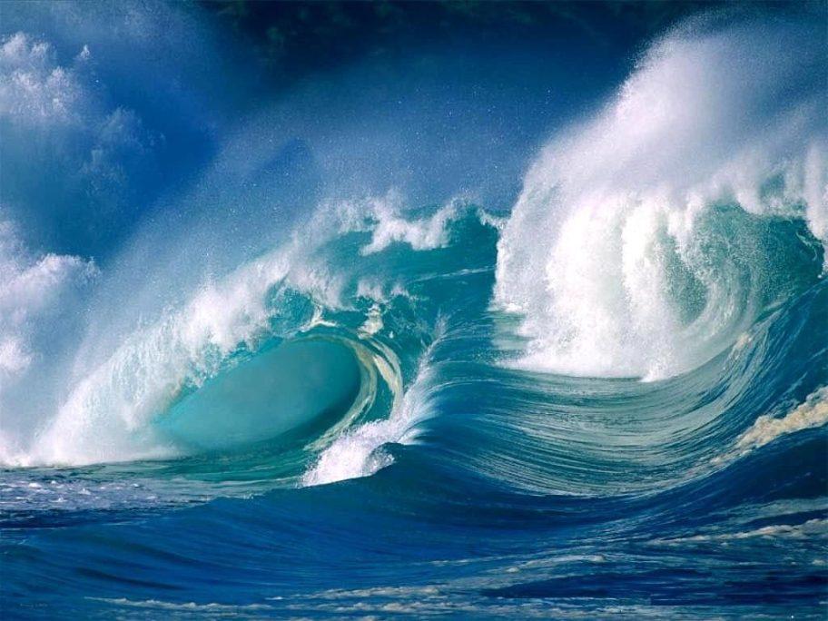 Swallow Ocean